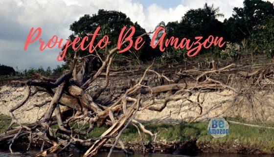 Proyecto Be Amazon: ¿Qué hacemos?