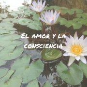 El amor y la consciencia